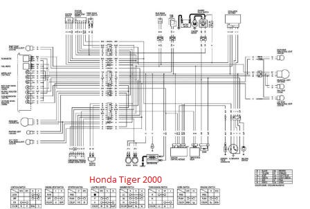Wiring Diagram Honda Tiger Not Lossing Wiring Diagram
