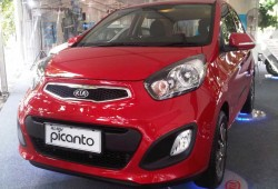 KIA All New Picanto Small City Car Murah Tidak Murahan