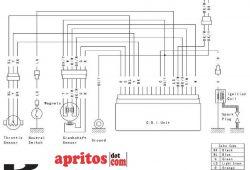 Skema Kelistrikan Wiring Diagram Kawasaki KX250